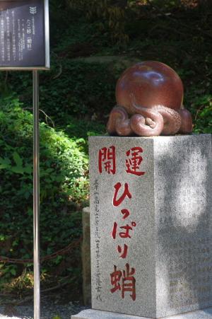 2011_09_28 13_11_42.jpg